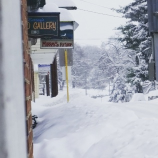 """Saturday 1/23, around 1 PM. Looking south from the safety of my front stoop. Looks like about 24"""" with drifting and plow piles 4 feet and higher. And still coming down!"""