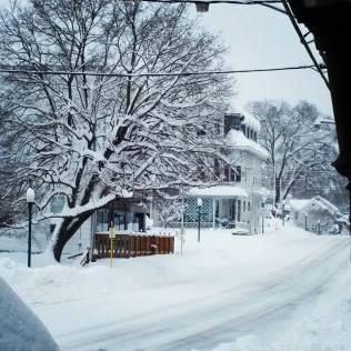 Saturday, 1/23: Looking north. So pretty!